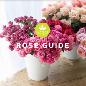 Mayesh Rose Guide The Curate Marketplace Curate Top Rated Florist Software vs. Details Flowers Software